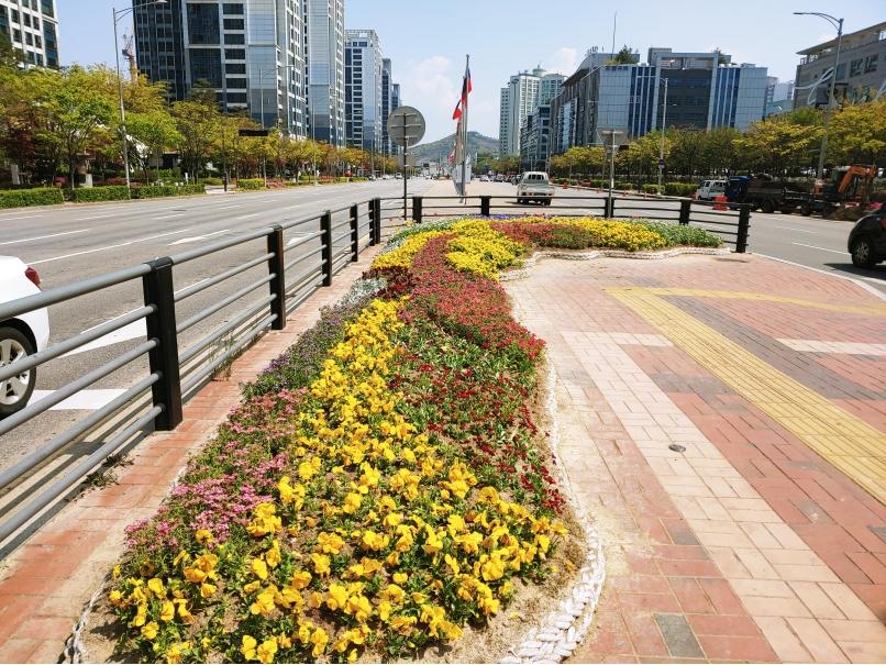 연수구, 송도국제도시 교통섬 8곳에 로프화단형 쌈지꽃밭의 1번째 이미지